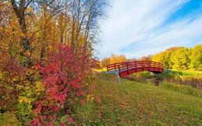 Картинка парк, мостик, деревья, листья, багрянец, ручей, небо, осень, облака