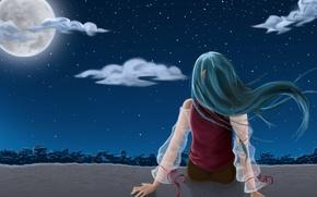 аниме ,девушка, спина, волосы, сидит, руки, деревья, ночь, звезды, луна обои