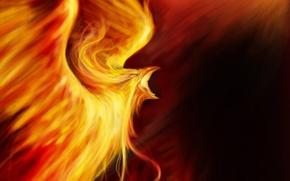 Картинка огонь, птица, фэнтези, арт, феникс