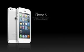 Картинка белый, отражение, фон, iphone 5
