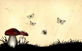 Картинка насекомые, грибы, Рисунок