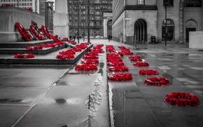 Обои улица, мемориал, память, город, венок