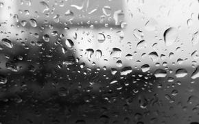 Картинка осень, небо, стекло, дождь, настроение, Капли, размытый фон, деревья. рекламный щит