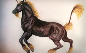 Обои единорог, рисунок, лошадь