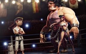 Обои situations, ринг, ситуации, бойцы, street fighter
