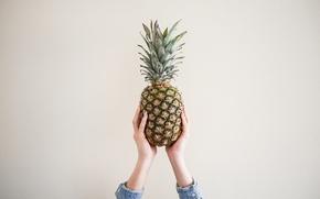 Картинка стена, руки, ананас