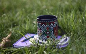 Картинка зелень, трава, вода, синий, ожерелье, альбом, чашка, бусы, карандаш, Украина, жемчужина