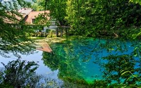 Картинка деревья, ветки, пруд, отражение, Германия, сад, Blaubeuren