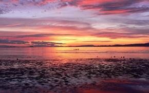 Картинка море, Закат, горизонт