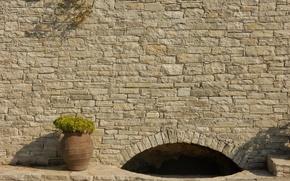 Картинка цветок, фон, стена, widescreen, обои, камень, структура, арка, wallpaper, широкоформатные, background, красивые обои, обои на …
