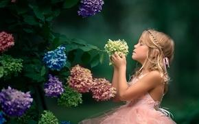 Обои цветы, настроение, девочка, соцветия, гортензия