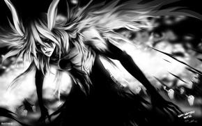 Картинка аниме, блич, гилианы, улькиорра