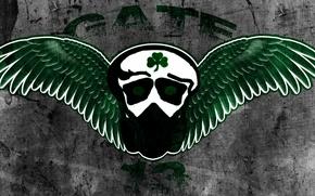 Картинка футбольный клуб, греческий, Клевер, Зелёные, Панатинаикос