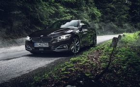 Картинка BMW, Dark, Car, Munich, Photo, Photography, Automotive, Trees, Slovakia, Woods, Cypodesign, Bayer, Cyprian, Bawaria, Cypo, ...