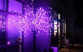 Обои свет, дерево, неон, декор