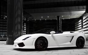 Картинка скорость, Lamborghini, Машины, цвеи белый