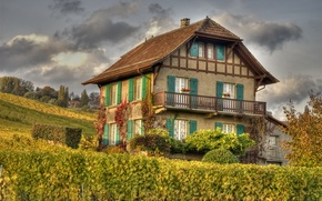 Картинка осень, природа, дом, виноградник, house, Nature, autumn, fall, vineyard