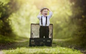 Картинка лес, радость, дети, детство, парк, эмоции, ребенок, мальчик, малыш, чемодан, обои от lolita777