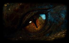Обои Dragon, глаз, Смауг, Хоббит: Пустошь Смауга, or There and Back Again, The Hobbit: The Desolation ...