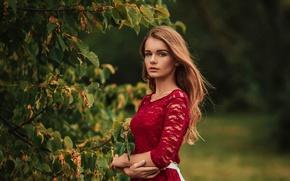 Картинка листья, девушка, ветки, дерево, green, милая, модель, платье, light, red, шатенка, красивая, прелесть, шикарная, inspiration, …
