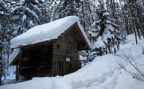 Картинка лес, снег, Зима, мороз, деревянный, домик, forest, nature, winter, snow, lodge, frost