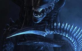 Обои aliens, пришелец, чужой