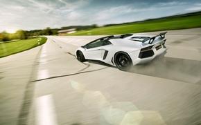 Картинка Roadster, Lamborghini, LP700-4, Aventador, LB834, Rear, Novitec Torado, Skid