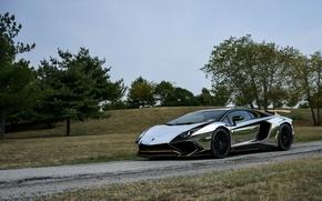 Картинка Lamborghini, Black, Aventador, Hrome