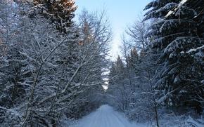 Картинка зима, дорога, снег, пейзаж