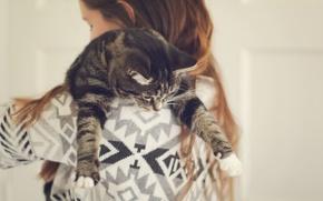 Обои кошка, девочка, ребенок, кот