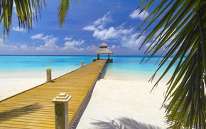 Обои дорога, море, пляж, листья, мост, гладь, берег, побережье, пейзажи, экзотика, landscape, багамы