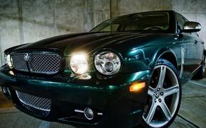 Картинка черный, Jaguar, Ягуар