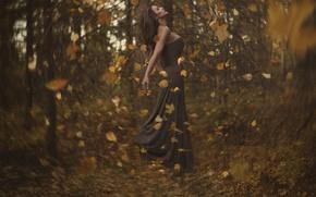 Картинка осень, лес, листья, девушка, вихрь