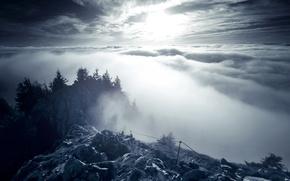 Обои скалы, лес, облака