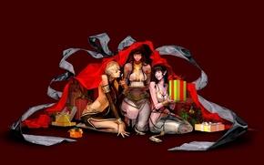 Картинка фентези, девушки, праздник, новый год, аниме, арт, подарки