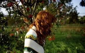 Картинка girl, grass, trees, nature, woman, flowers, model, mood, bokeh, redhead, petals, female, poncho, Shannon Murray
