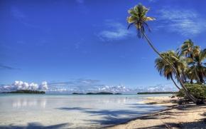 Обои рай, берег, пляж, остров, пальма