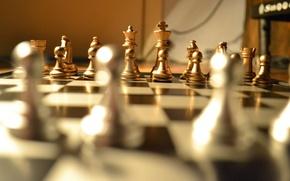 Картинка шахматы, chess, Алёхин, настольная игра