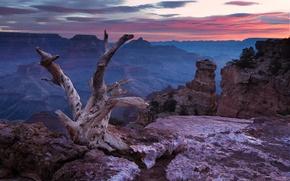 Картинка небо, облака, камни, скалы, Каньон, США, коряга