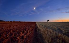 Картинка поле, горизонт, пашня