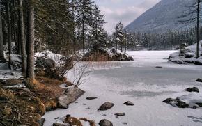 Картинка лед, зима, небо, снег, деревья, горы, природа, озеро