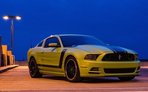 Картинка mustang, ford, 302, boss, 2013