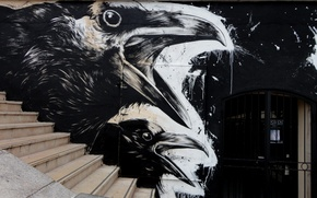 Картинка Ворон, Улица, Граффити, Черно-белое