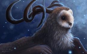 Картинка снег, сова, птица, крылья, существо, арт, рога