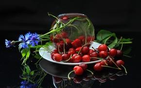 Картинка вишня, ягоды, василек