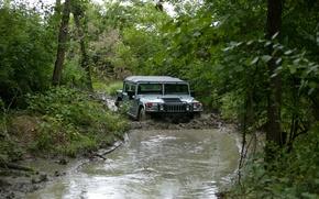 Обои грязь, гражданский, бездорожье, деревья, внедорожник, Hummer, лес