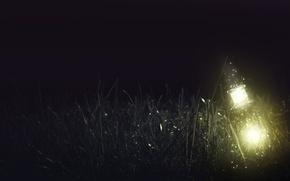 Картинка трава, стекло, свет, ночь, lights, бутылка, glass, grass, night, bottle