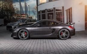 Обои черный, Porsche, Cayman, порше, TechArt, кайман