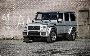 Картинка Mercedes-Benz, мерседес, AMG, гелендваген, G-Class, W463
