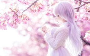 Картинка свет, настроение, весна, кукла, сакура